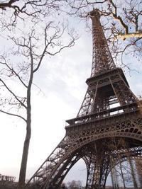 2014年パリ - ルーシュの花仕事