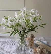 リナリアの花束 - handmade flower maya