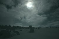 久々 八幡平の樹氷 - 888WebLog