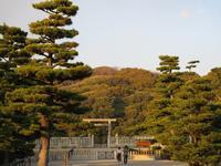 Emperor Nintoku's tomb, museum, and Daisen Park・・・・ nice place to visit! - from Japan