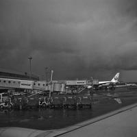 #579〜新千歳空港〜 - カメラを相棒に