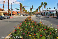 Palm Desert, California - カリフォルニア - SweetDays @ Photo
