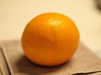 マイヤーレモン!(^^)! - 自然の中でⅡ