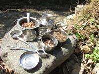 小春日和の休日 - 南阿蘇 手づくり農園 菜の風