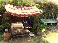 日々育っていく隠れ家日記 - 世話要らずの庭