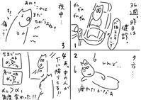 妊娠36週、教科書通りの人 - 絵描きカバのつれづれ帖