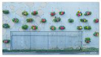 倉敷かわいい壁コレクション。 - Yuruyuru Photograph