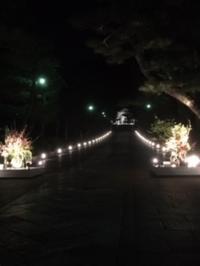 京都 東山 花灯路 - 行く当てのない言葉