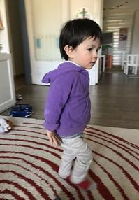 1歳8ヶ月☆ - お義母さんはシチリア人