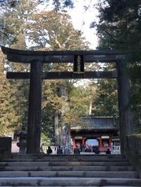 日光 鬼怒川 宇都宮の旅 2 - MIYAKO BEAR