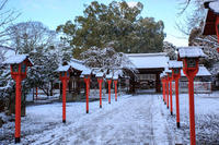 雪景色! ~平野神社~ - Prado Photography!