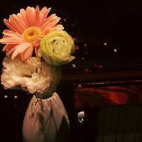 47回目の結婚記念日 - ワタシ流 暮らし方   ~建築のこと日常のこと~