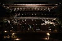 四季京艶 京の夜 --kyotoFourSeasons-- a night view - 四季京艶