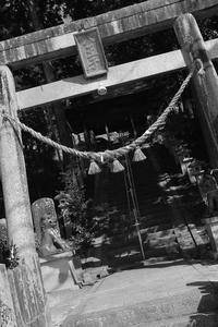 二つのギネス認証世界一 - miyabine's フォト日記2~身の周りのきれい・可愛い・面白い~