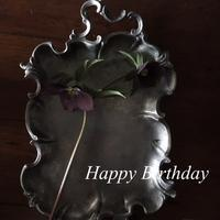 Happy Birthday☆彡 - Salt&Orange時々Pepper