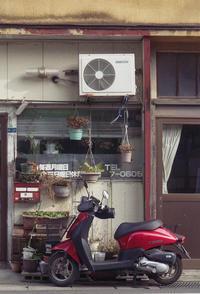 昭和な店先の紅いスクーター - Film&Gasoline