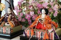 横浜山手西洋館 ひな祭り装飾2017 横浜市イギリス館 - 木洩れ日 青葉 photo散歩