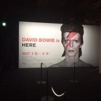 「DAVID BOWIE is」@寺田倉庫 - わたしの毎日