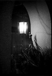 純喫茶ローレンス - Picture In A Frame