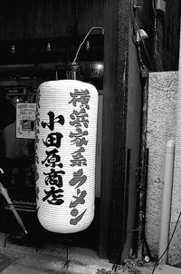 春惜月 寫誌 ⑫ 街を歩けば… - le fotografie di digit@l