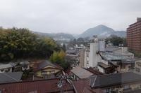 ■ 伊豆の旅   17.3.15 - 舞岡公園の自然2