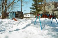 雪深い小公園と雪の下の福寿草 - 照片画廊