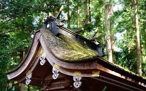 日本という国と自分のアイデンティティを顧みる旅 -女二人紀州ぐるり- - Life@イデアス(アジア経済研究所 開発スクール 27期生ブログ)