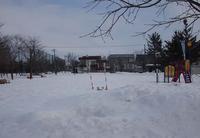 3月15日 今日の写真 - ainosatoブログ02