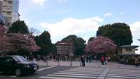 本日の上野公園 - CROSS SKETCH