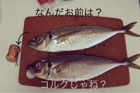 鯵定食@じぇいこ亭 - ジェイクnoチカラ リターンズ!