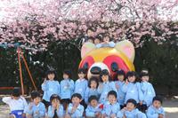 あやめ組のみなさんへ - 慶応幼稚園ブログ【未来の子どもたちへ ~Dream Can Do!Reality Can Do!!~】