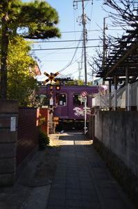 鎌倉 路地道 - 風の香に誘われて 風景のふぉと缶