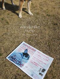 """中部最大級わんこのマルシェ""""わんだらけ-wandarake-""""は犬だらけ♪@名古屋市港区 【スライドショーあり】 - yamatoのひとりごと"""