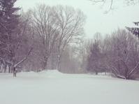 大雪 - 私のカントリーリビング