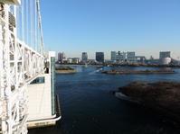 東京そぞろ歩き:レインボーブリッジ(2) - 日本庭園的生活