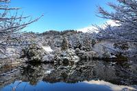 雪景色! ~龍安寺~ - Prado Photography!