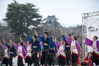 2017 浜松がんこ祭り - tamaranyのお散歩2