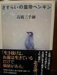 『さすらいの皇帝ペンギン』新刊お知らせ - 三千綱ブログ