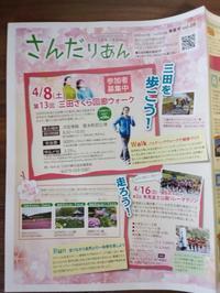 さんだりあん 春夏号☆ - カットとヘナの家 ガーデニング美容師の日記