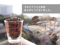 コーヒー豆完売ありがとうございました! - 【500人以上にラテアートを伝授】cafe beans +Y
