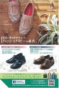 春のハッシュパピーキャンペーン 開催中 - 靴のヨリズミ 店長のブログ    Kutsulog Blog
