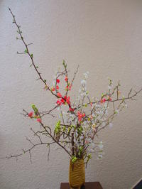 春の花 - 東京いけばな日記 花と暮らしと生活と