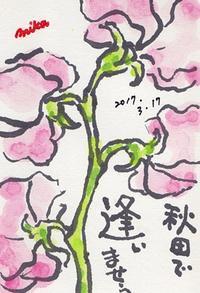行くぞ! 秋田!! - きゅうママの絵手紙の小部屋