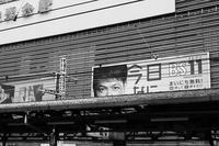 line of sight - jinsnap (weblog on a snap shot)