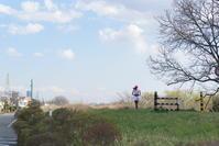 春風run - 幸せな写真時間