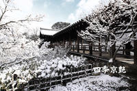 四季京艶 冬 --Kyoto Four Seasons-- a snowscape - 四季京艶