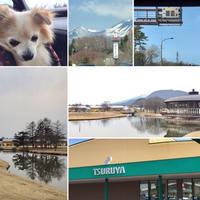 今年初の軽井沢♪ - きれいの瞬間~写真で伝えるstory~