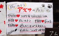 2017.3.18 宇都宮動物園☆トラのアズサちゃんお誕生日会【Tiger】 - 青空に浮かぶ月を眺めながら