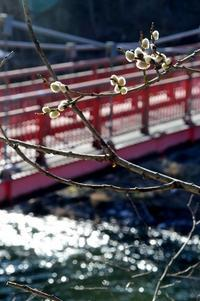 母袋子橋 是川西母袋子、東母袋子 - あちゃこちゃばやばや 2