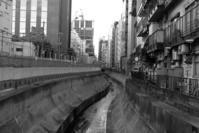 渋谷 - M8とR-D1写真日記